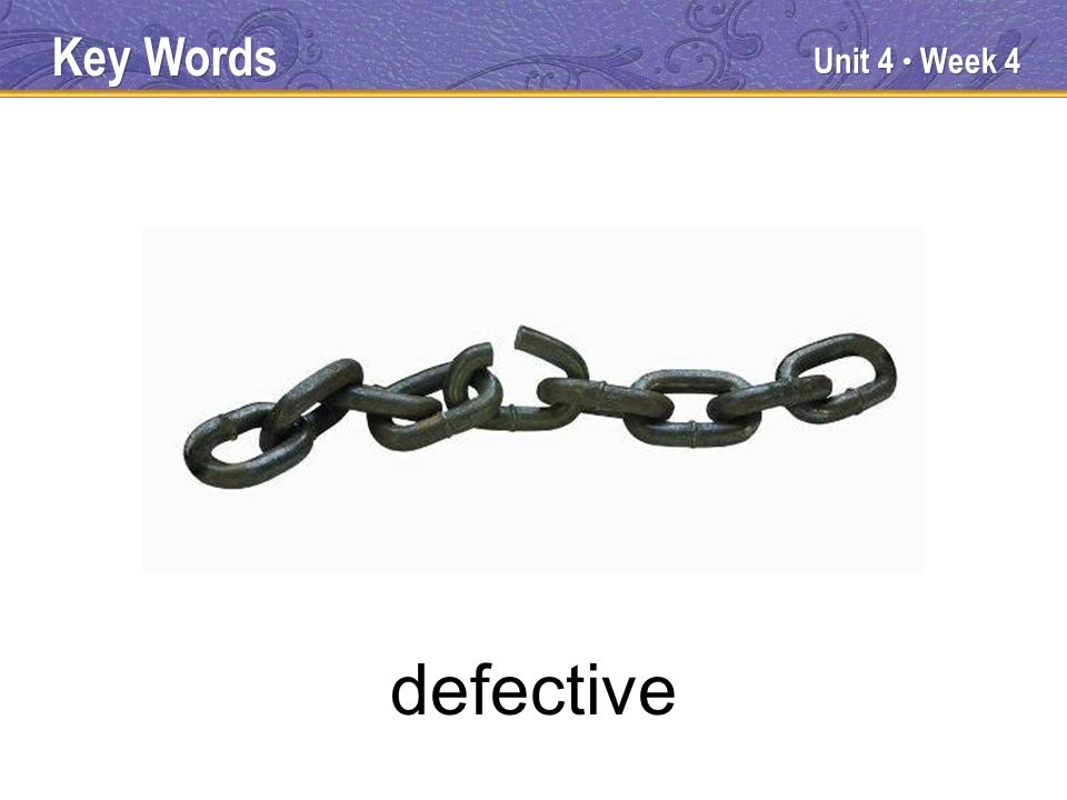 Unit 4 Week 4 defective Key Words