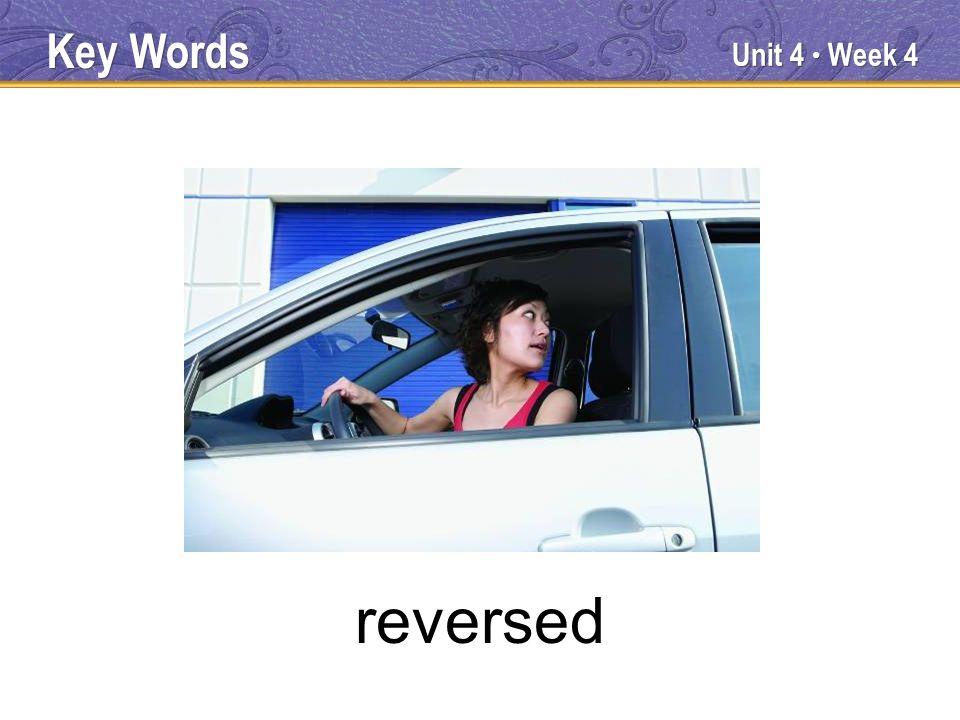 Unit 4 Week 4 dangling Key Words
