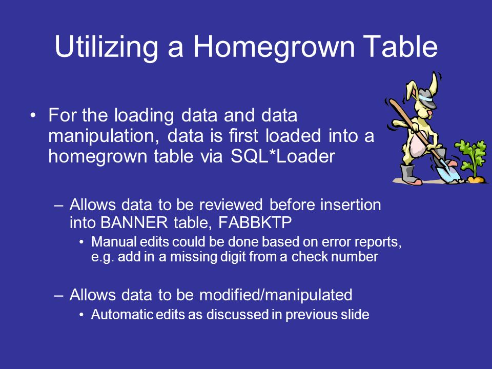 Utilizing a Homegrown Table For the loading data and data manipulation, data is first loaded into a homegrown table via SQL*Loader –Allows data to be