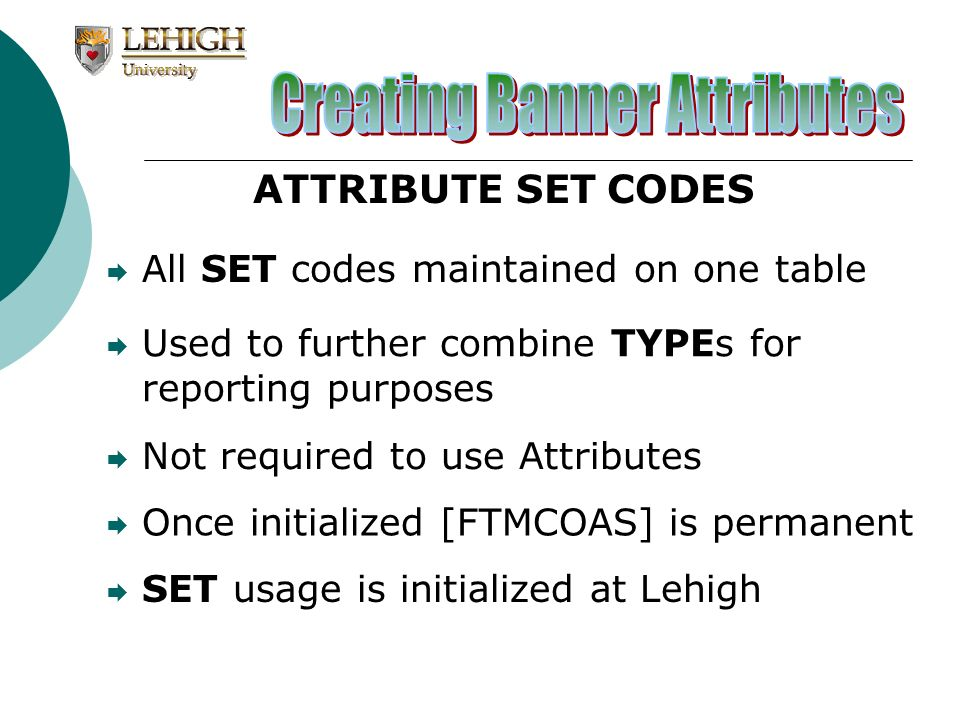 All SET codes maintained on one table Used to further combine TYPEs for reporting purposes Once initialized [FTMCOAS] is permanent SET usage is initia