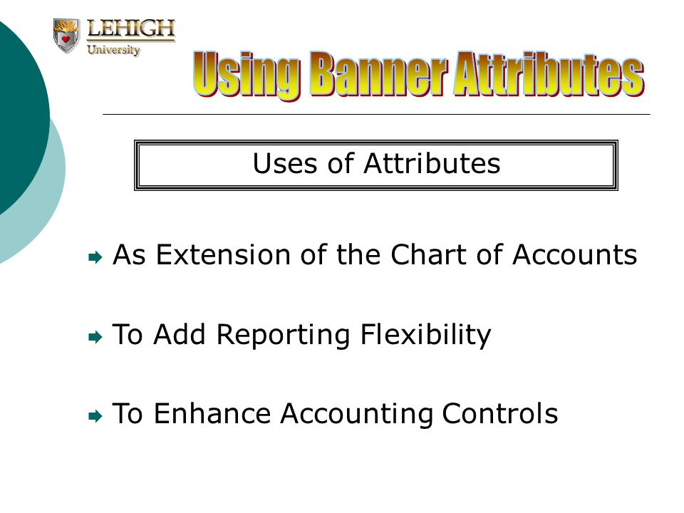 Allows for groupings of similar information without having to build structure into account, fund or org codes Provides a controlled method to classifying large groups of data Enables dynamic reporting Extension of the Chart of Accounts