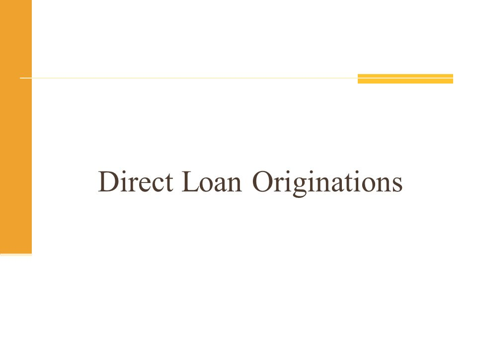 Direct Loan Originations
