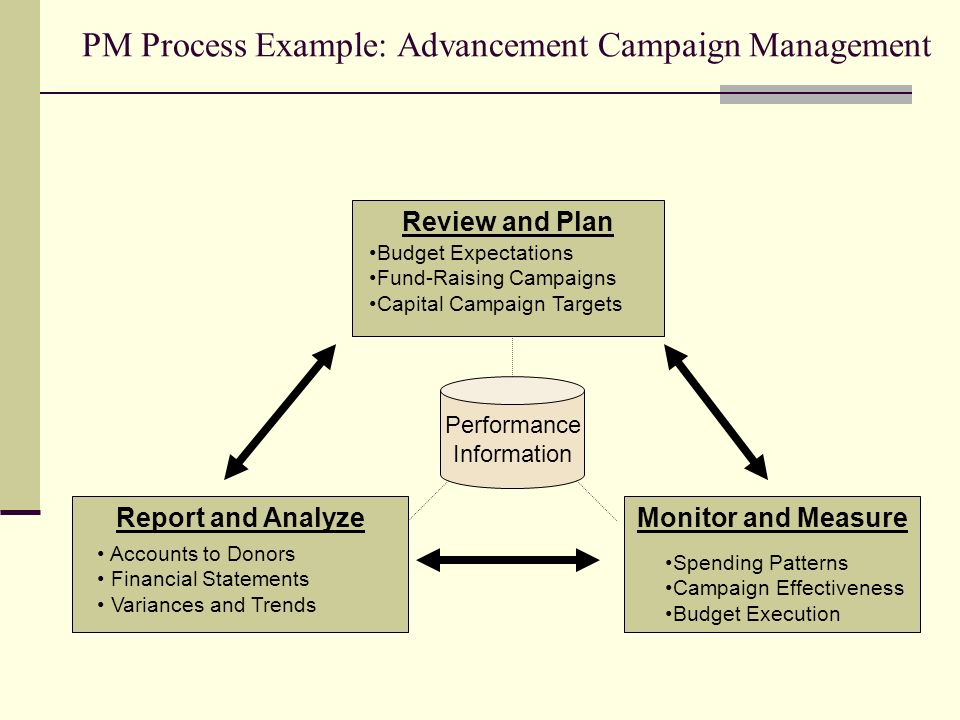 PM Process Example: Advancement Campaign Management Report and Analyze Review and Plan Monitor and Measure Budget Expectations Fund-Raising Campaigns