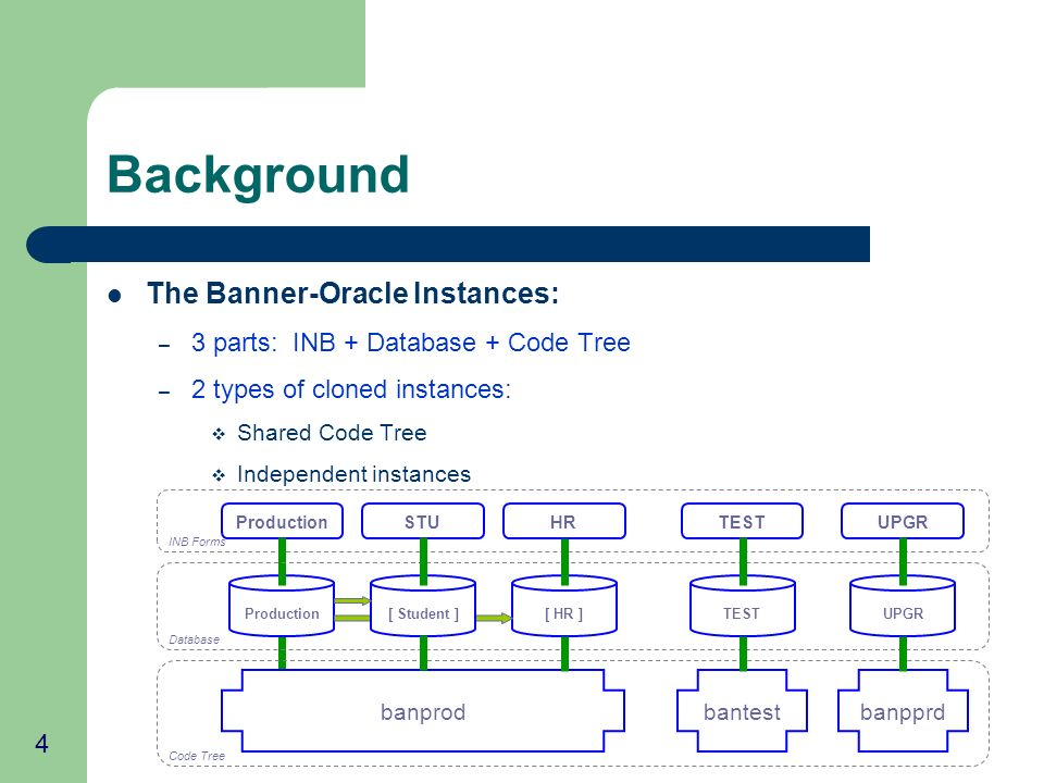4 Background The Banner-Oracle Instances: – 3 parts: INB + Database + Code Tree – 2 types of cloned instances: Shared Code Tree Independent instances