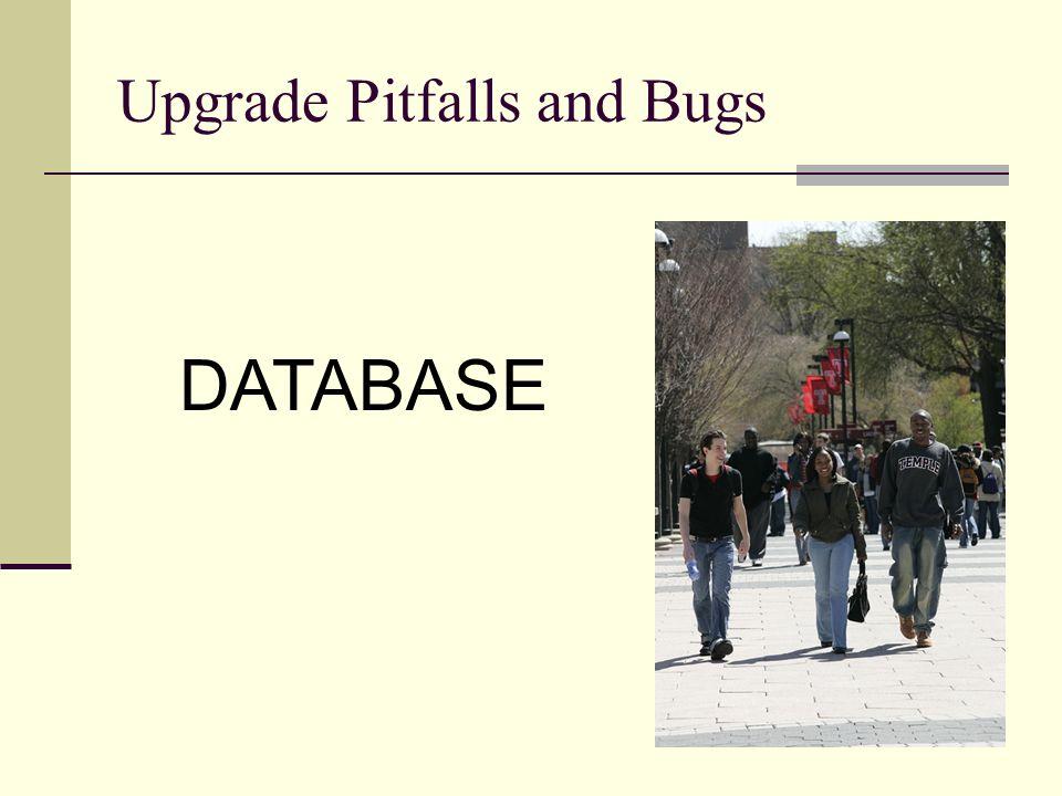 Upgrade Pitfalls and Bugs DATABASE