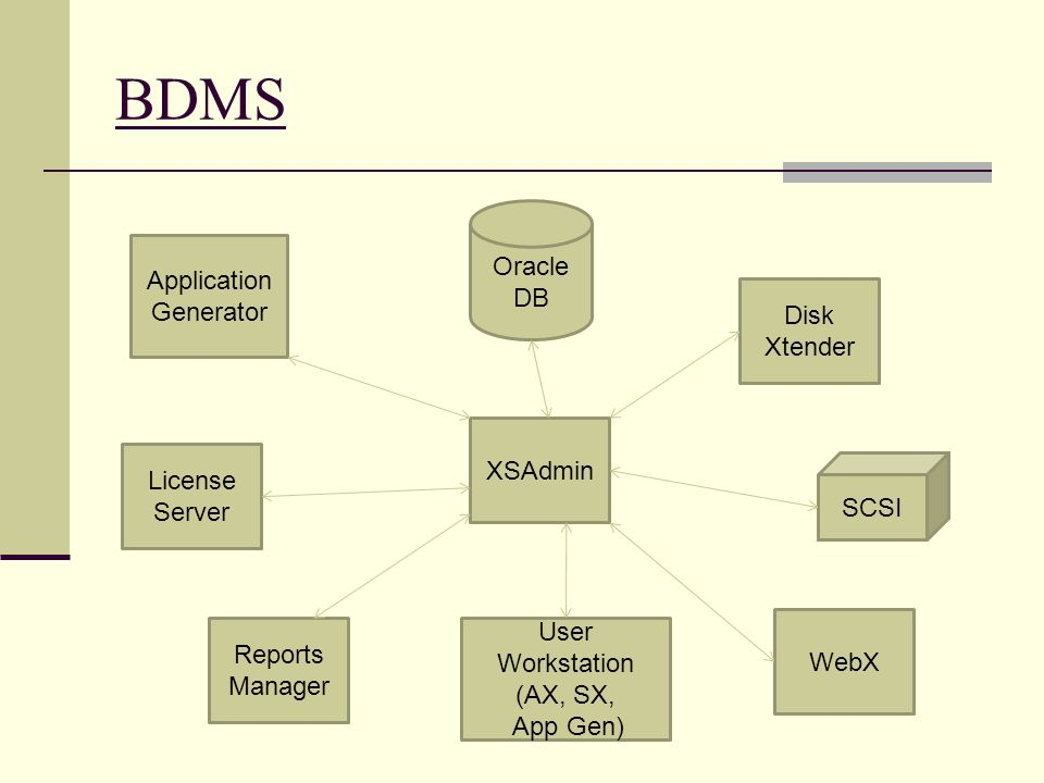 BDMS User Workstation (AX, SX, App Gen) SCSI Oracle DB WebX Reports Manager XSAdmin Disk Xtender License Server Application Generator