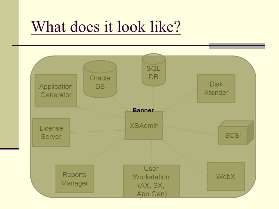 What does it look like? User Workstation (AX, SX, App Gen) SCSI SQL DB Oracle DB WebX Reports Manager XSAdmin Disk Xtender License Server Application