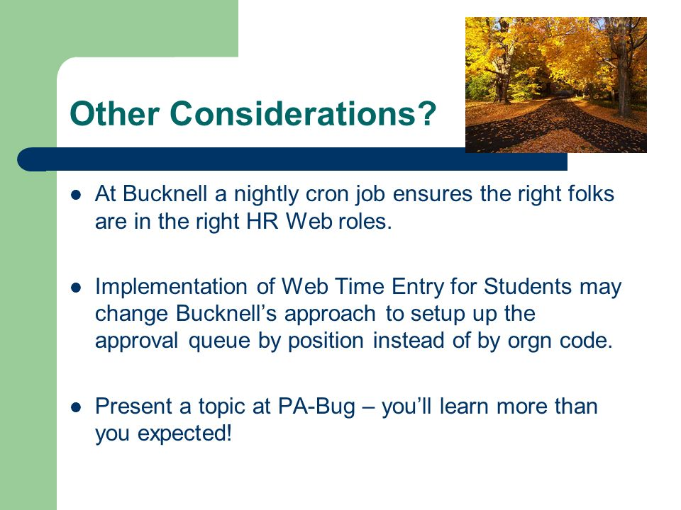 Other Considerations? At Bucknell a nightly cron job ensures the right folks are in the right HR Web roles. Implementation of Web Time Entry for Stude