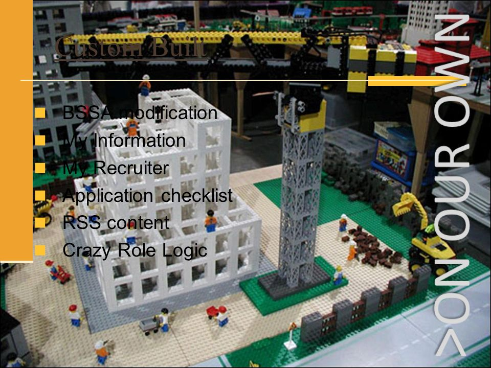 BSSA modification My Information My Recruiter Application checklist RSS content Crazy Role Logic Custom Built