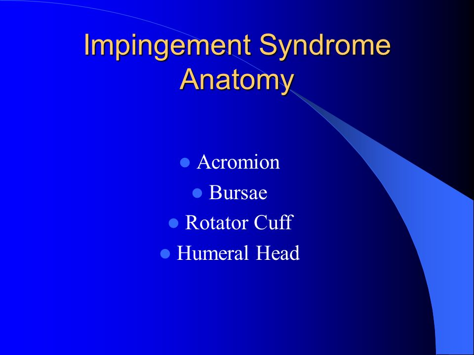 Impingement Syndrome Anatomy Acromion Bursae Rotator Cuff Humeral Head