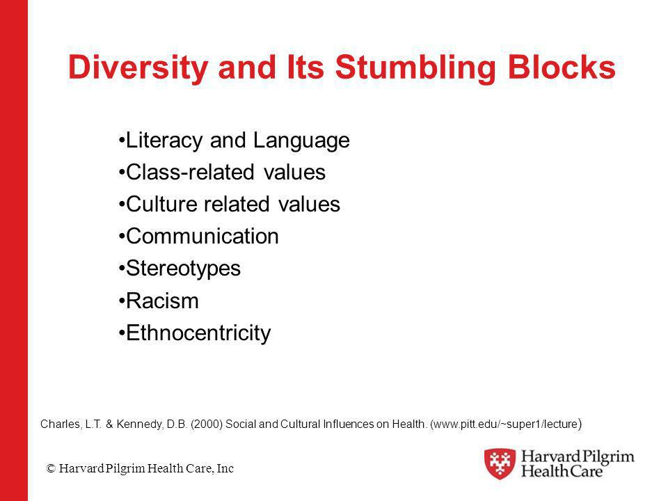© Harvard Pilgrim Health Care, Inc Diversity and Its Stumbling Blocks Literacy and Language Class-related values Culture related values Communication