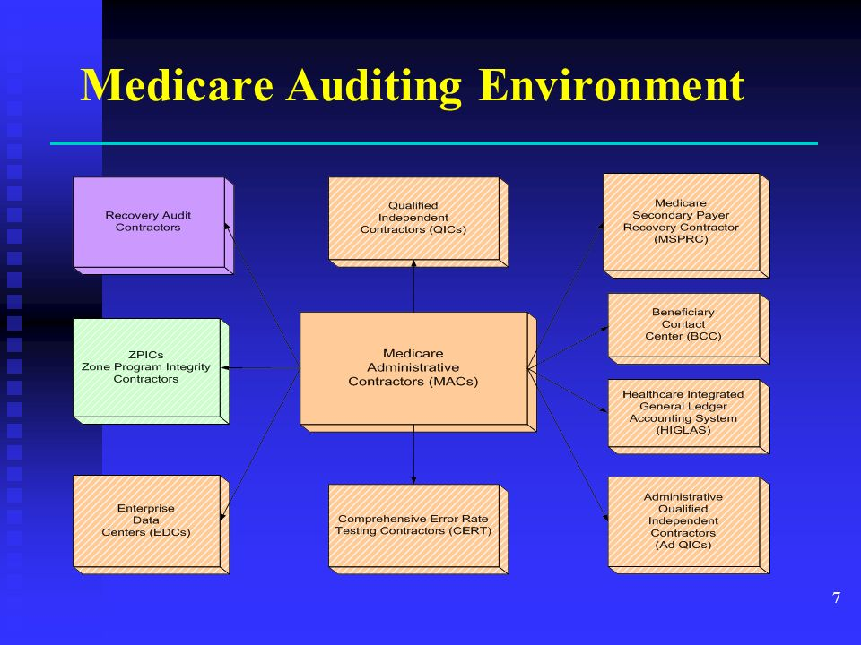 Medicare Auditing Environment 7