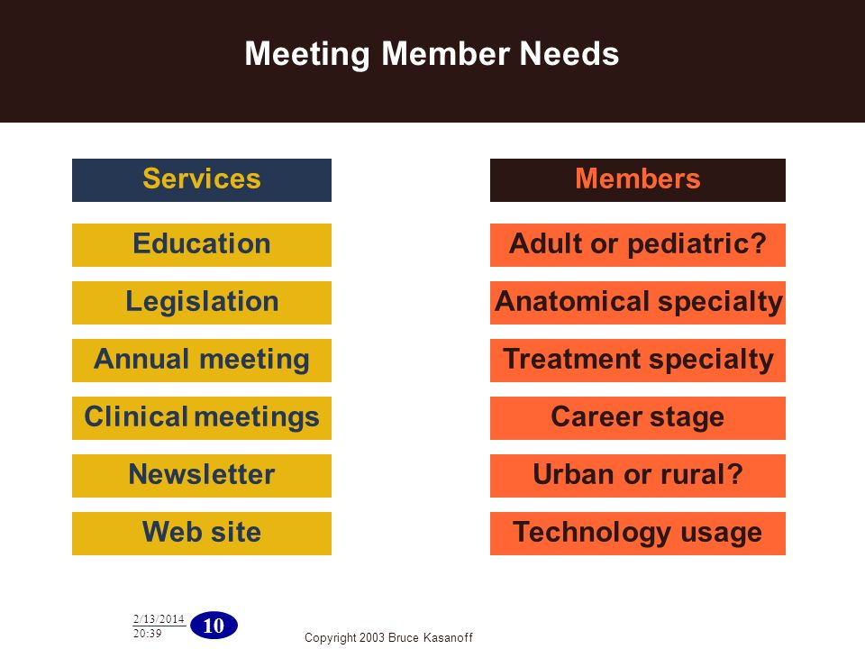 Copyright 2003 Bruce Kasanoff 10 2/13/2014 20:40 Meeting Member Needs Education Legislation Annual meeting Clinical meetings Newsletter Web site Services Adult or pediatric.