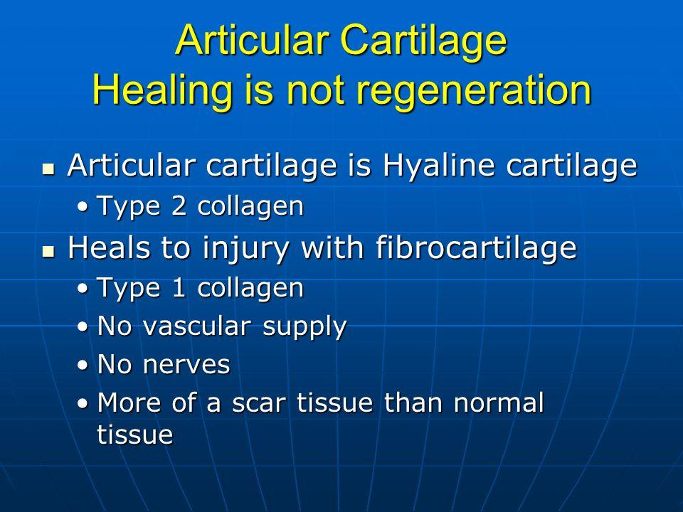 Articular Cartilage Healing is not regeneration Articular cartilage is Hyaline cartilage Articular cartilage is Hyaline cartilage Type 2 collagenType