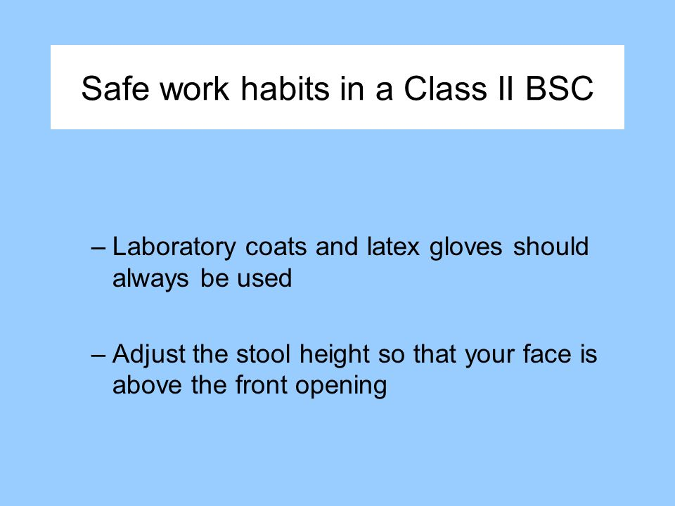 Safe work habits in a Class II BSC –Laboratory coats and latex gloves should always be used –Adjust the stool height so that your face is above the front opening