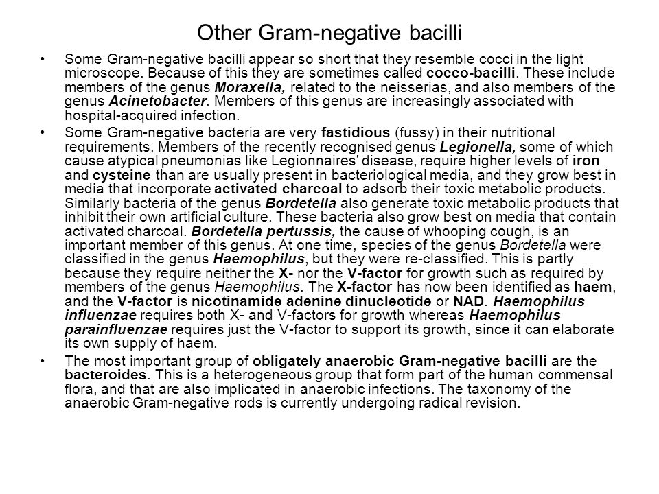 Other Gram-negative bacilli Some Gram-negative bacilli appear so short that they resemble cocci in the light microscope. Because of this they are some