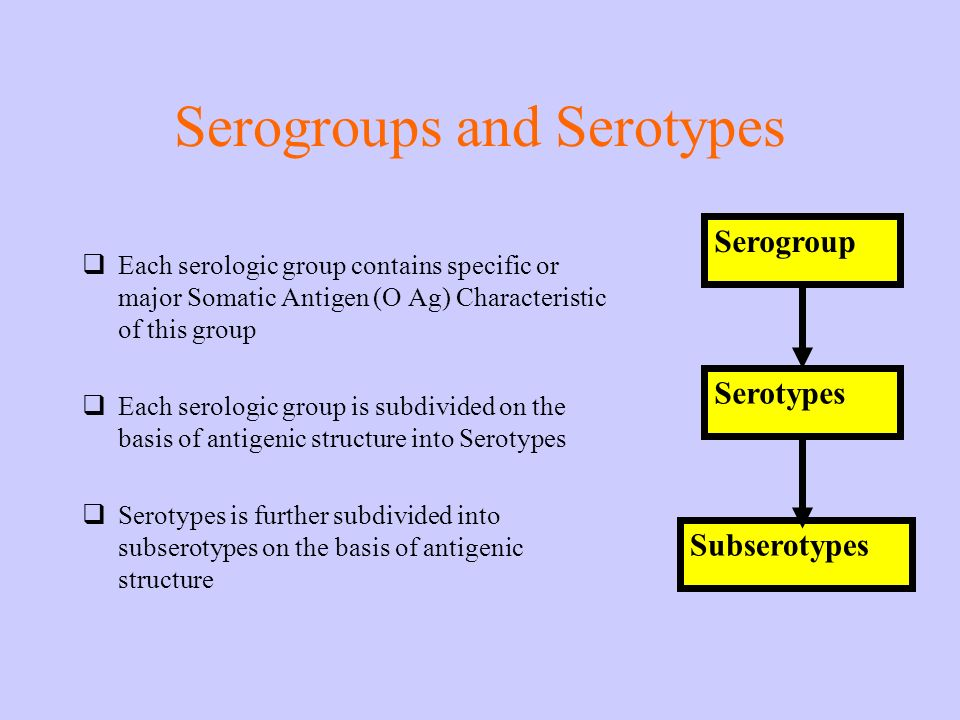 Serogroups and Serotypes Each serologic group contains specific or major Somatic Antigen (O Ag) Characteristic of this group Each serologic group is s