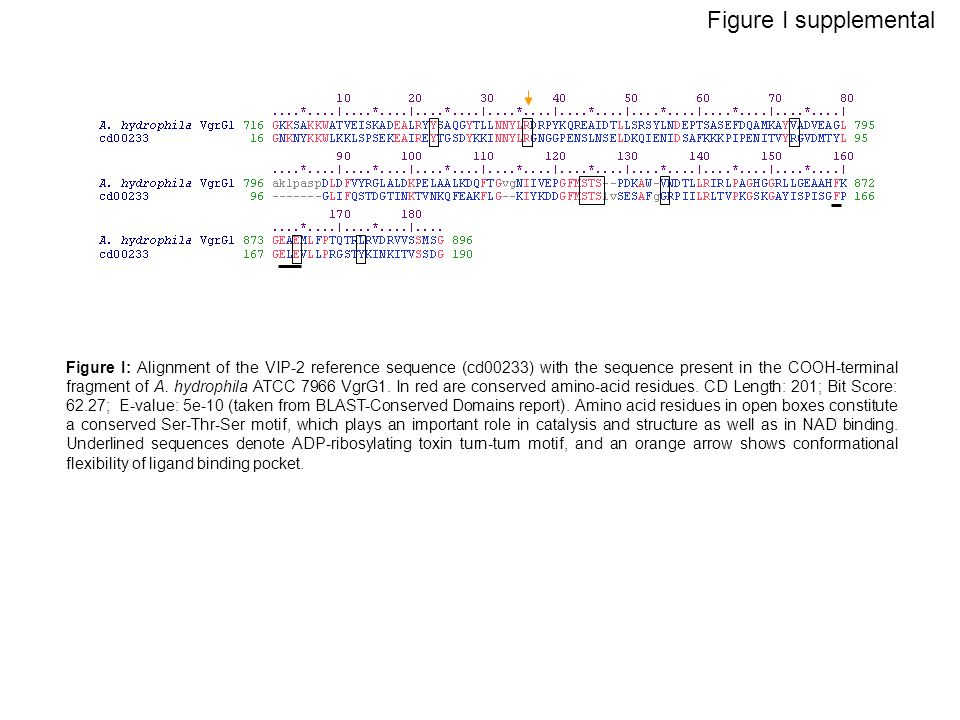 Figure I supplemental Figure I: Alignment of the VIP-2 reference sequence (cd00233) with the sequence present in the COOH-terminal fragment of A. hydr