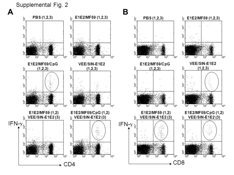 CD4 IFN- CD8 PBS (1,2,3) IFN- E1E2/MF59 (1,2,3) E1E2/MF59/CpG (1,2,3) VEE/SIN-E1E2 (1,2,3) E1E2/MF59 (1,2) VEE/SIN-E1E2 (3) E1E2/MF59/CpG (1,2) VEE/SIN-E1E2 (3) PBS (1,2,3)E1E2/MF59 (1,2,3) E1E2/MF59/CpG (1,2,3) VEE/SIN-E1E2 (1,2,3) E1E2/MF59 (1,2) VEE/SIN-E1E2 (3) E1E2/MF59/CpG (1,2) VEE/SIN-E1E2 (3) AB Supplemental Fig.