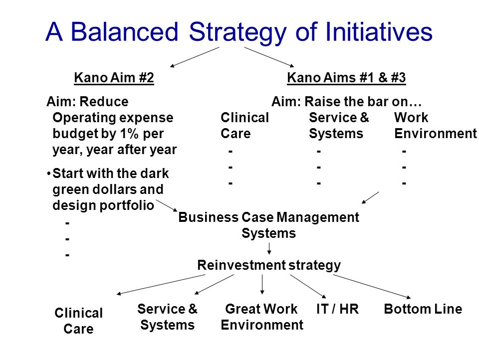 Kano Aim #2 Aim: Reduce Operating expense budget by 1% per year, year after year Start with the dark green dollars and design portfolio - Kano Aims #1 & #3 Aim: Raise the bar on… Clinical Care - Service & Systems - Work Environment - Business Case Management Systems Reinvestment strategy Clinical Care Service & Systems Great Work Environment IT / HRBottom Line A Balanced Strategy of Initiatives