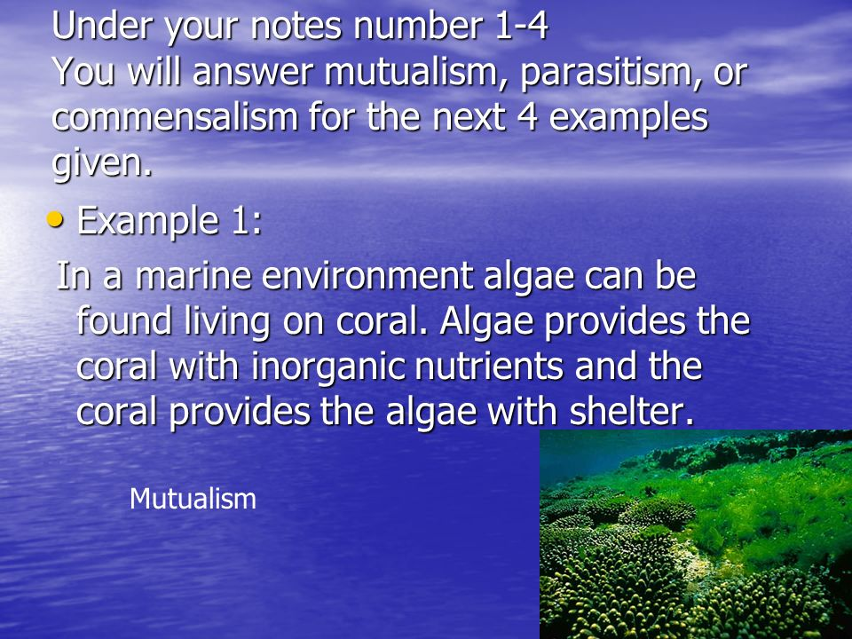 Under your notes number 1-4 You will answer mutualism, parasitism, or commensalism for the next 4 examples given. Example 1: Example 1: In a marine en