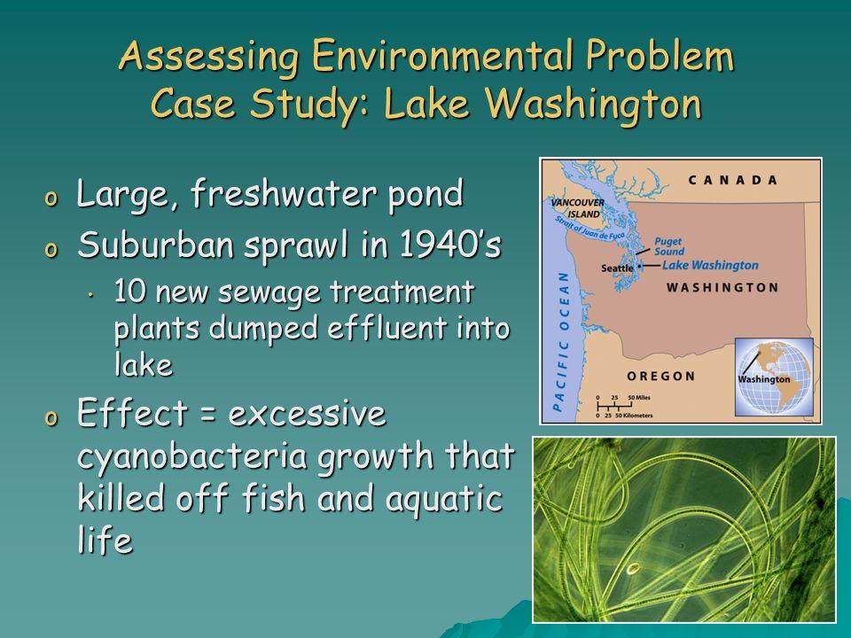 Assessing Environmental Problem Case Study: Lake Washington o Large, freshwater pond o Suburban sprawl in 1940s 10 new sewage treatment plants dumped