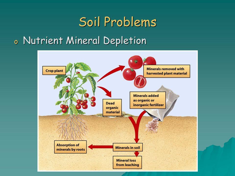 Soil Problems o Nutrient Mineral Depletion