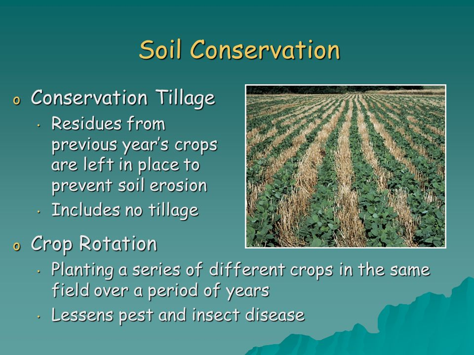 Soil Conservation o Conservation Tillage Residues from previous years crops are left in place to prevent soil erosion Residues from previous years cro