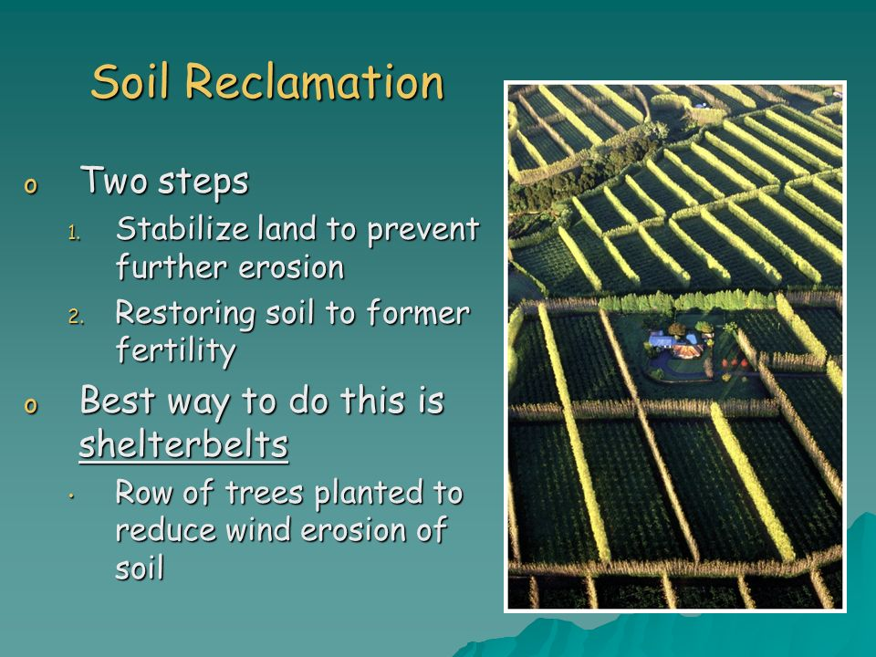Soil Reclamation o Two steps 1. Stabilize land to prevent further erosion 2. Restoring soil to former fertility o Best way to do this is shelterbelts