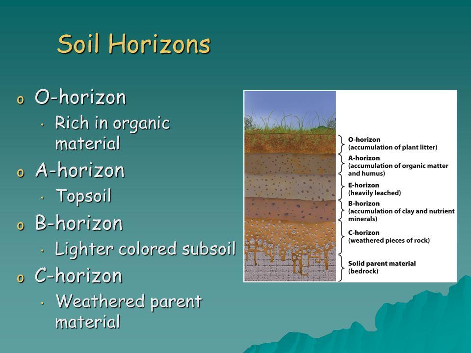 Soil Horizons o O-horizon Rich in organic material Rich in organic material o A-horizon Topsoil Topsoil o B-horizon Lighter colored subsoil Lighter co
