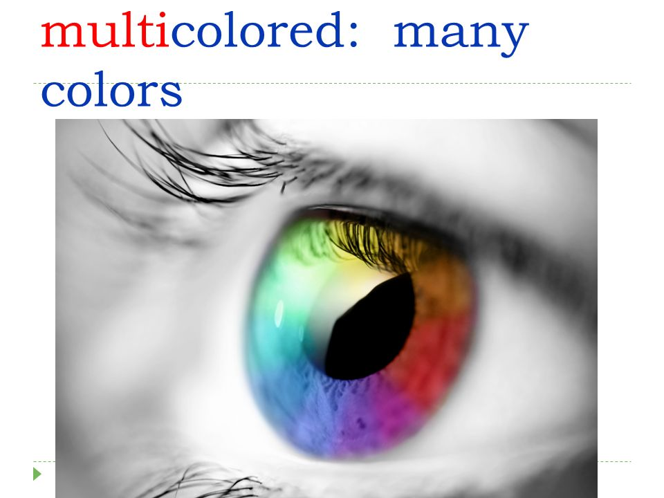 multicolored: many colors