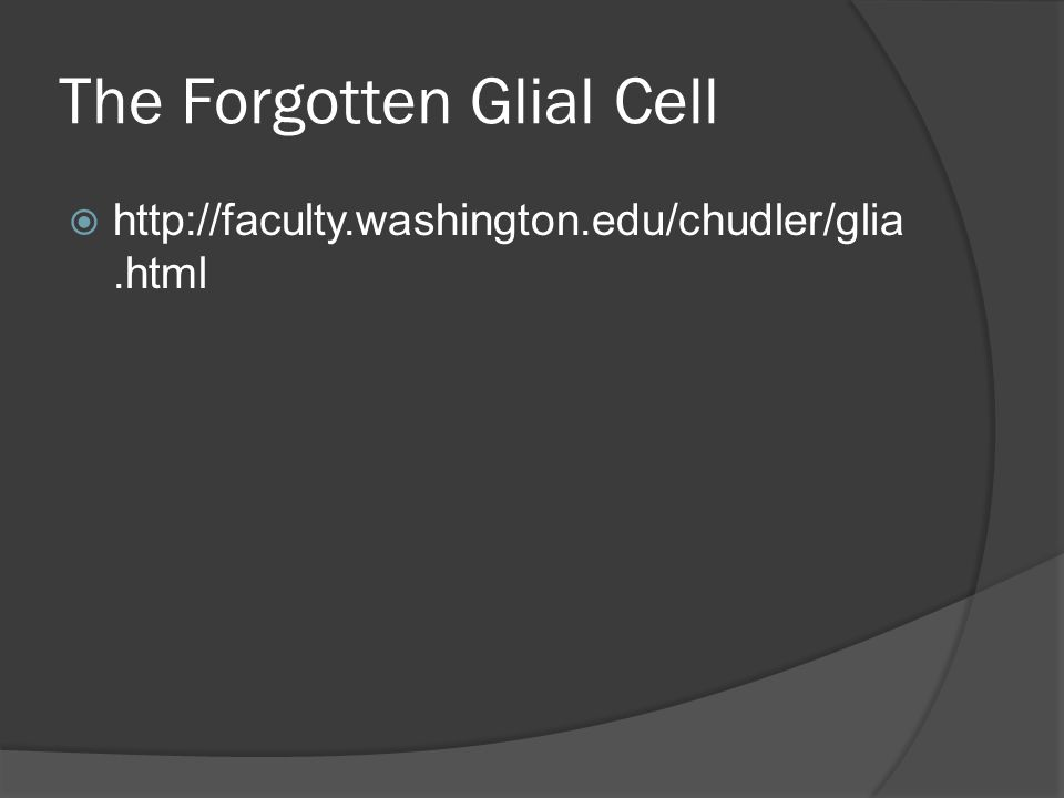 The Forgotten Glial Cell http://faculty.washington.edu/chudler/glia.html