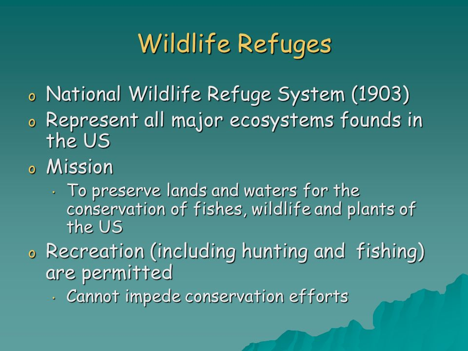 Wildlife Refuges o National Wildlife Refuge System (1903) o Represent all major ecosystems founds in the US o Mission To preserve lands and waters for