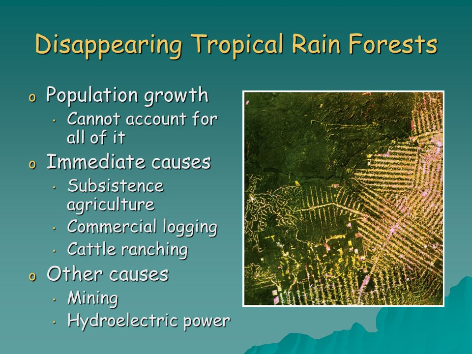 Disappearing Tropical Rain Forests o Population growth Cannot account for all of it Cannot account for all of it o Immediate causes Subsistence agricu
