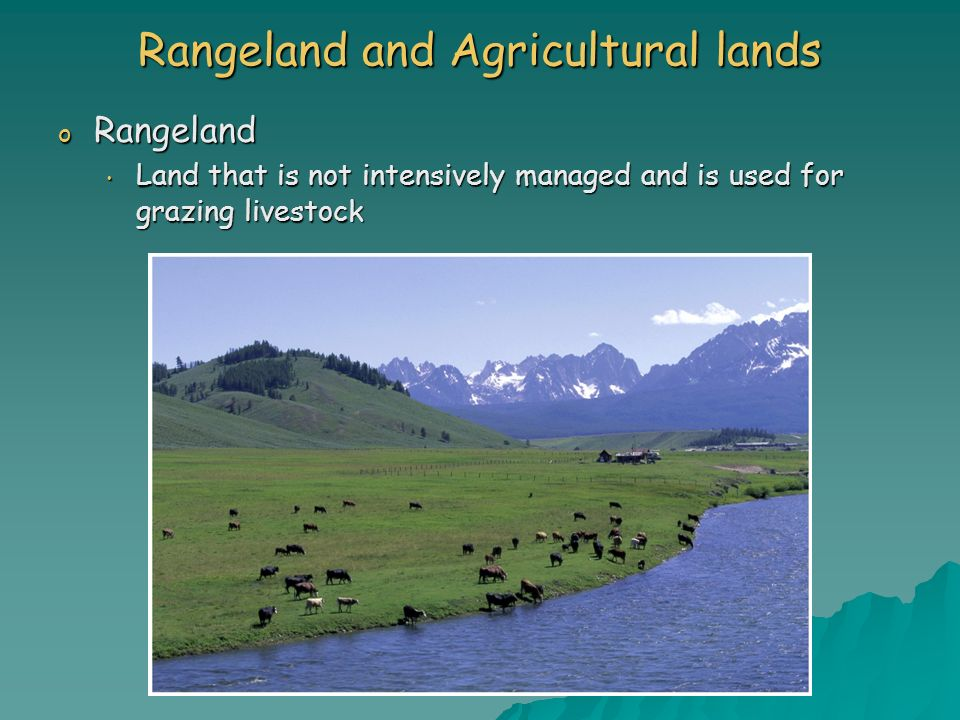 Rangeland and Agricultural lands o Rangeland Land that is not intensively managed and is used for grazing livestock Land that is not intensively manag