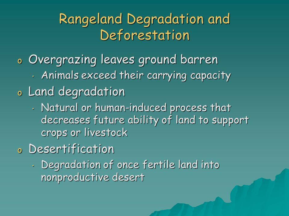 Rangeland Degradation and Deforestation o Overgrazing leaves ground barren Animals exceed their carrying capacity Animals exceed their carrying capaci