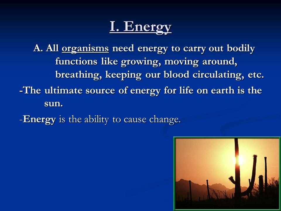 II.How Organisms Obtain Energy 1. Autotrophs: The producers.
