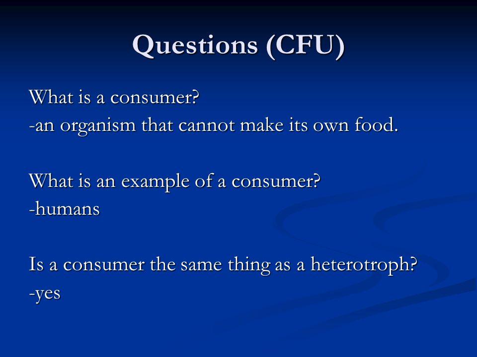 What kind of heterotroph is this? -carnivore