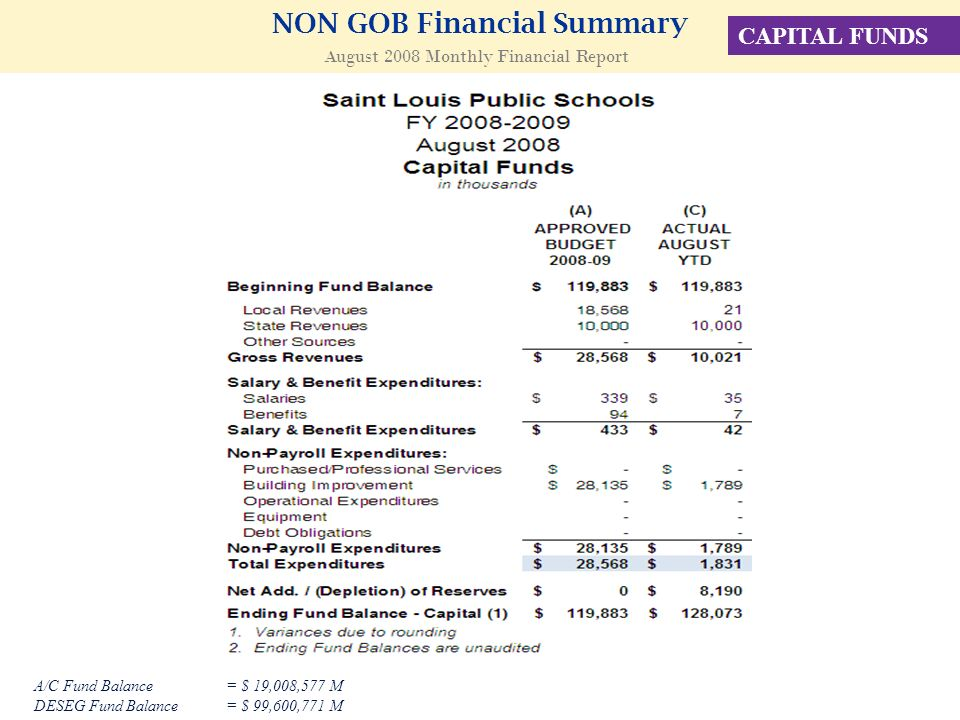 NON GOB Financial Summary August 2008 Monthly Financial Report CAPITAL FUNDS A/C Fund Balance = $ 19,008,577 M DESEG Fund Balance= $ 99,600,771 M