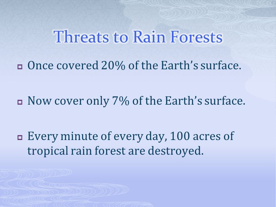 Once covered 20% of the Earths surface. Now cover only 7% of the Earths surface. Every minute of every day, 100 acres of tropical rain forest are dest