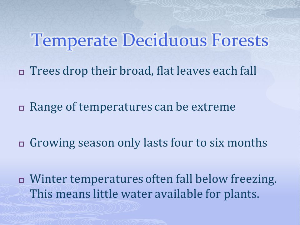 Trees drop their broad, flat leaves each fall Range of temperatures can be extreme Growing season only lasts four to six months Winter temperatures of