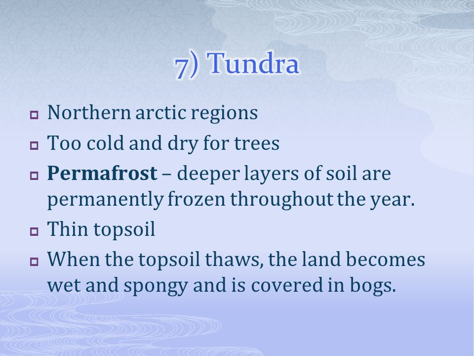 Northern arctic regions Too cold and dry for trees Permafrost – deeper layers of soil are permanently frozen throughout the year. Thin topsoil When th