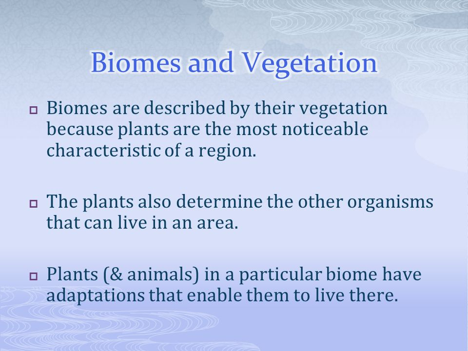 Biomes are described by their vegetation because plants are the most noticeable characteristic of a region. The plants also determine the other organi