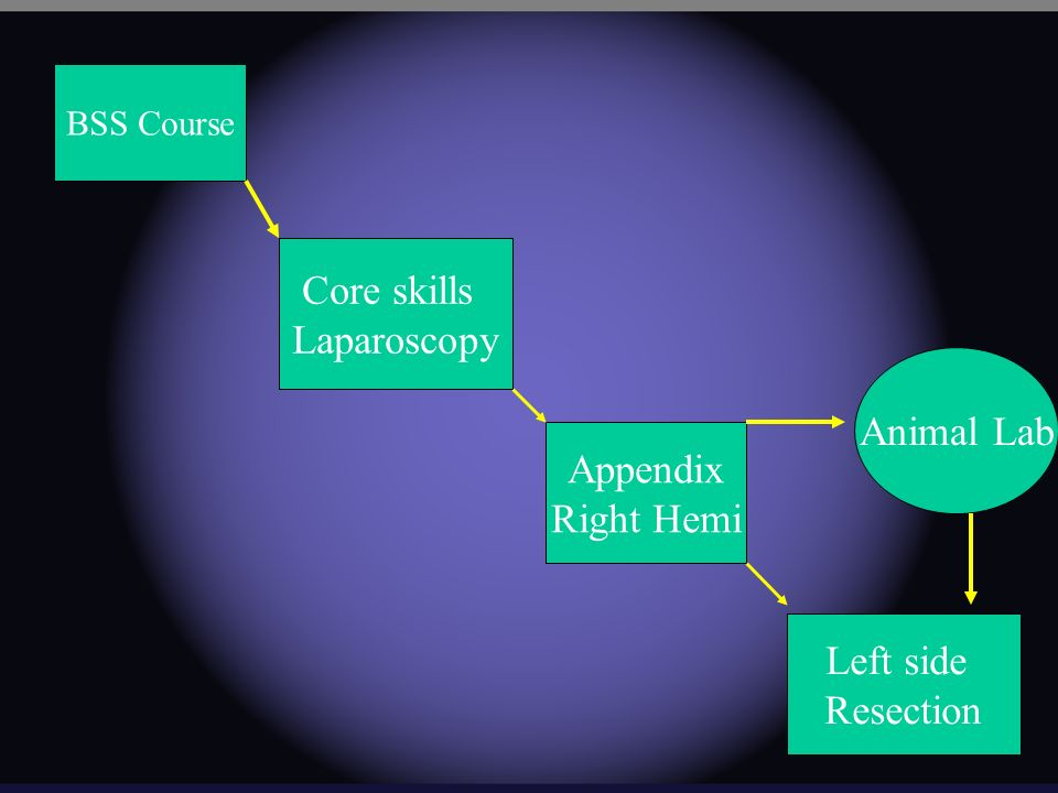 BSS Course Core skills Laparoscopy Appendix Right Hemi Left side Resection Animal Lab