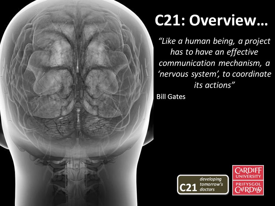 Like a human being, a project has to have an effective communication mechanism, a nervous system, to coordinate its actions Bill Gates C21: Overview…