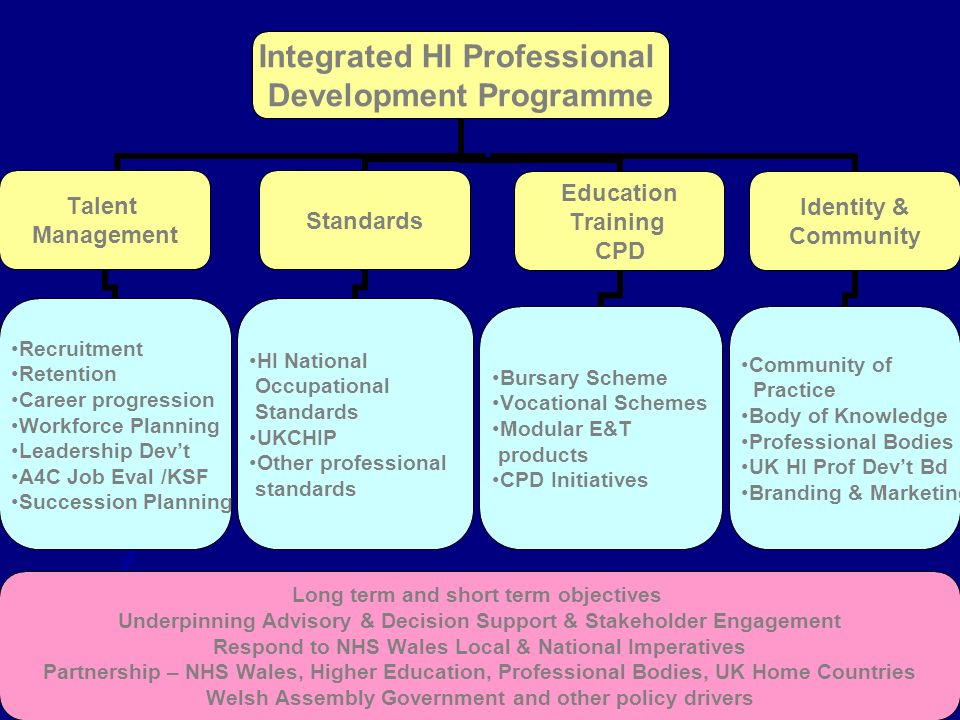 Integrated HI Professional Development Programme Talent Management Recruitment Retention Career progression Workforce Planning Leadership Devt A4C Job Eval /KSF Succession Planning Long term and short term objectives Underpinning Advisory & Decision Support & Stakeholder Engagement Respond to NHS Wales Local & National Imperatives Partnership – NHS Wales, Higher Education, Professional Bodies, UK Home Countries Welsh Assembly Government and other policy drivers Standards HI National Occupational Standards UKCHIP Other professional standards Education Training CPD Bursary Scheme Vocational Schemes Modular E&T products CPD Initiatives Identity & Community Community of Practice Body of Knowledge Professional Bodies UK HI Prof Devt Bd Branding & Marketing