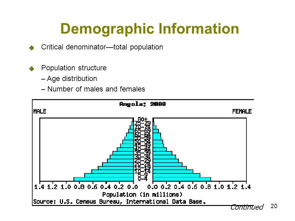 20 Demographic Information Critical denominatortotal population Population structure – Age distribution – Number of males and females