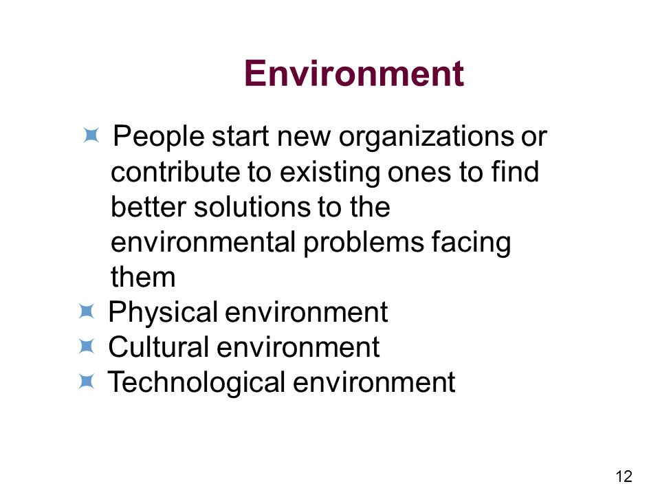 12 Environment People start new organizations or contribute to existing ones to find better solutions to the environmental problems facing them Physical environment Cultural environment Technological environment