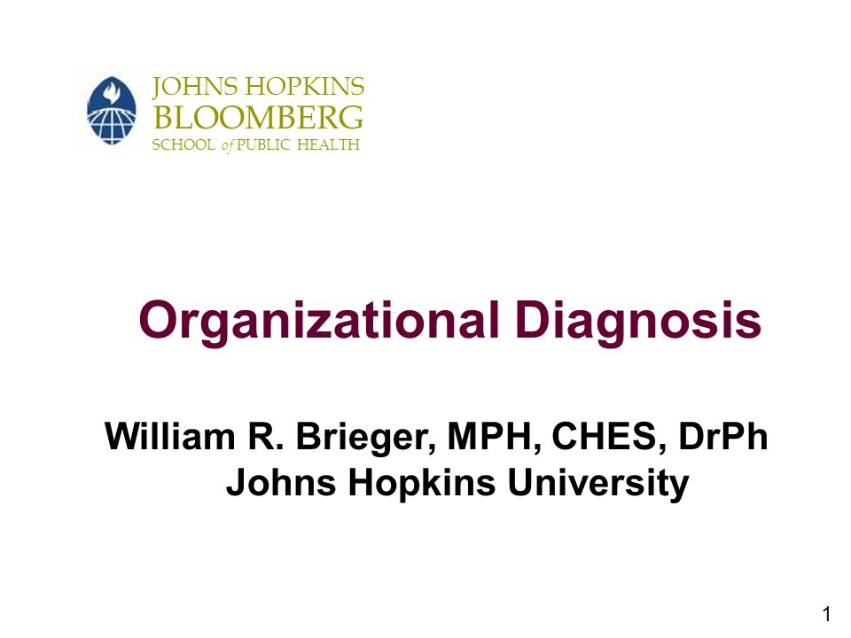 1 JOHNS HOPKINS BLOOMBERG SCHOOL of PUBLIC HEALTH Organizational Diagnosis William R.