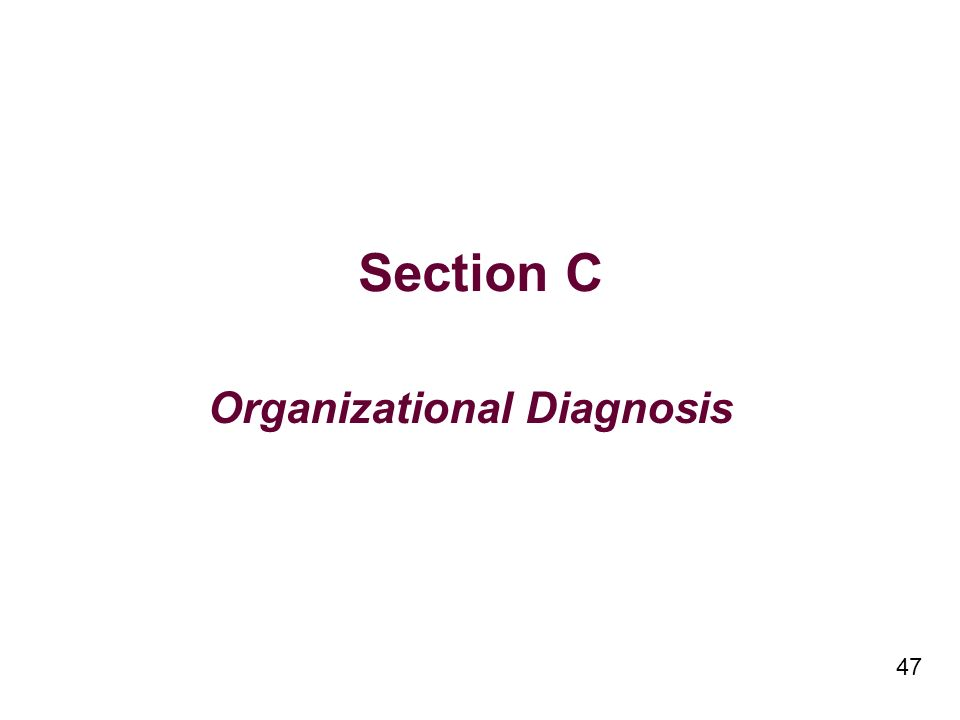 47 Section C Organizational Diagnosis